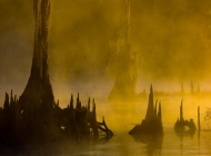 Foggy_River_1280
