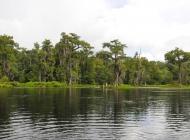 river scene2