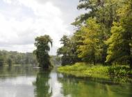 river scene3